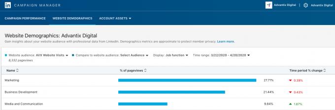 The LinkedIn Website Demographics tool